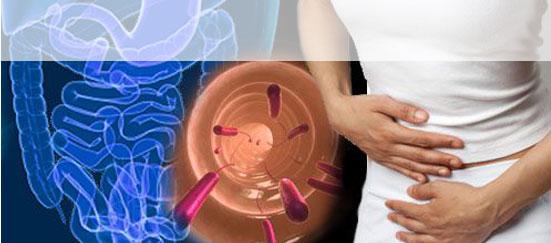 darmstörungen symptome